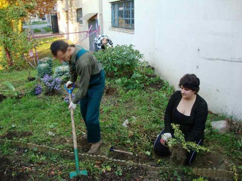 prace w ogrodzie (6).JPG