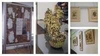 Wystawa (1)_1.jpg