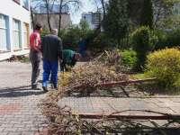 Prace w ogrodzie  (7).JPG