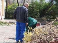 Prace w ogrodzie (8).JPG