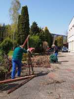 Prace w ogrodzie  (9).JPG