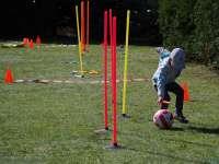 sport (7)_1.JPG