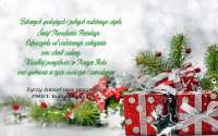 188407_swieta_prezenty_swierk_dekoracja.jpg