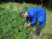 pracownia ogrodnicza (4).JPG