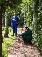 Prace porządkowe i ogrodnicze